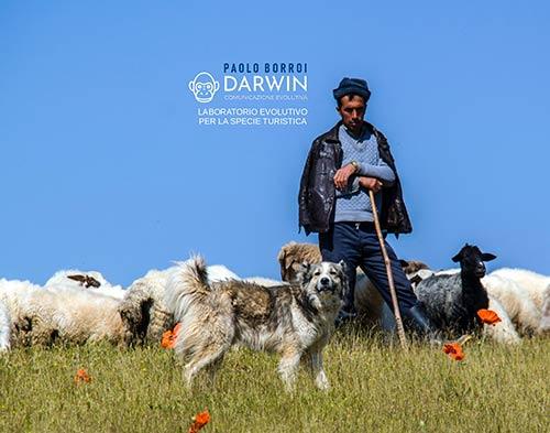 darwin-high